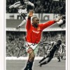 Signed Andy Cole Manchester United Montage