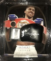 signed-anthony-joshua-boxing-glove