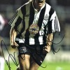 Signed-Darren-Peacock-Newcastle-United-photo-12x8-The-Entertainers-NUFC-271885755096