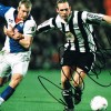 Signed-Darren-Peacock-Newcastle-United-photo-12x8-The-Entertainers-NUFC-3-271885755110