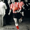 Signed-Stan-Anderson-Sunderland-AFC-Autograph-Photo-Proof-281715042880